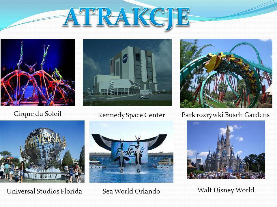 Kąpiel i nurkowanie w naturalnych źródłach na Florydzie to jedna z największych i z pewnością niezapomnianych atrakcji.