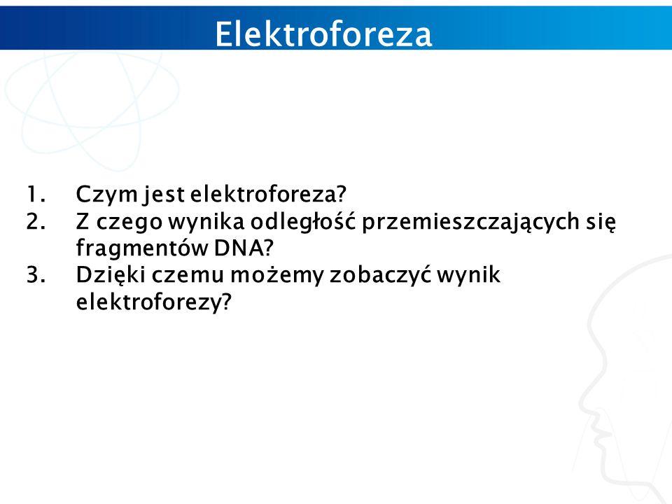 Elektroforeza 1.Czym jest elektroforeza.
