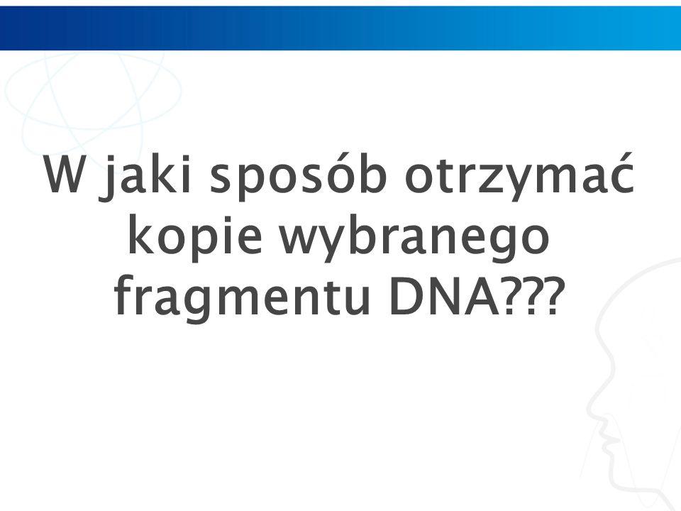 W jaki sposób otrzymać kopie wybranego fragmentu DNA???