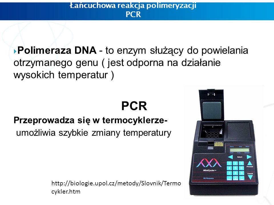 Łańcuchowa reakcja polimeryzacji PCR  Polimeraza DNA - to enzym służący do powielania otrzymanego genu ( jest odporna na działanie wysokich temperatur ) PCR Przeprowadza się w termocyklerze- umożliwia szybkie zmiany temperatury http://biologie.upol.cz/metody/Slovnik/Termo cykler.htm