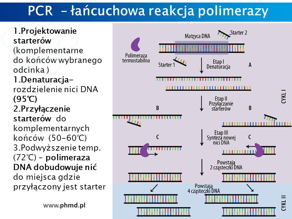 PCR – łańcuchowa reakcja polimerazy 1.Projektowanie starterów (komplementarne do końców wybranego odcinka ) 1.Denaturacja- rozdzielenie nici DNA (95℃) 2.Przyłączenie starterów do komplementarnych końców (50-60℃) 3.Podwyższenie temp.