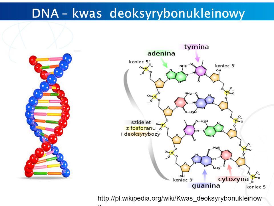 DNA – kwas deoksyrybonukleinowy http://pl.wikipedia.org/wiki/Kwas_deoksyrybonukleinow y