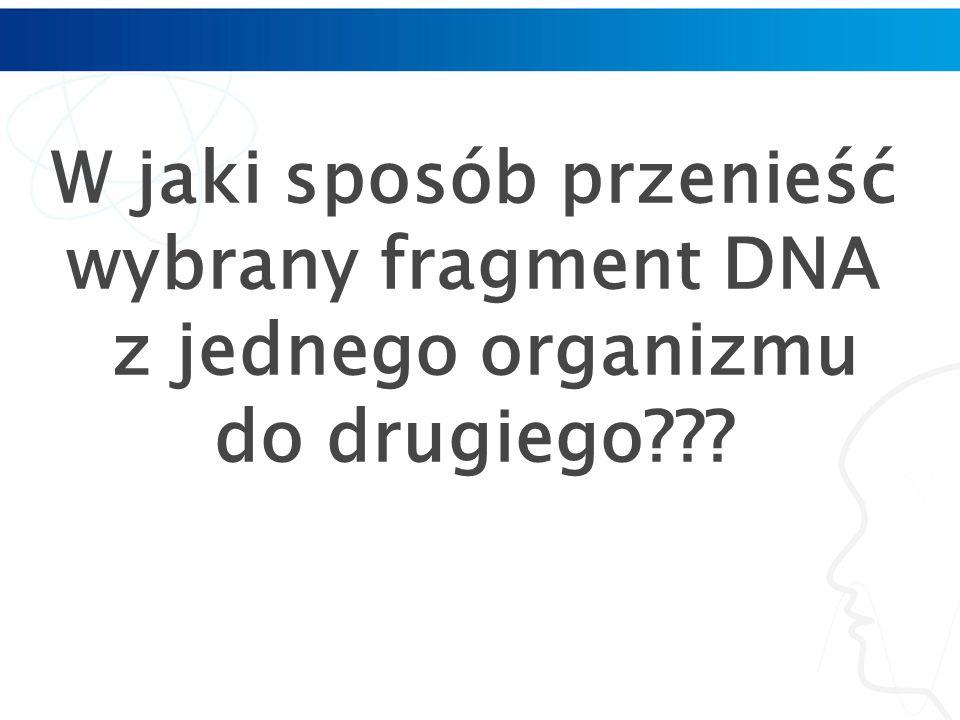 W jaki sposób przenieść wybrany fragment DNA z jednego organizmu do drugiego???