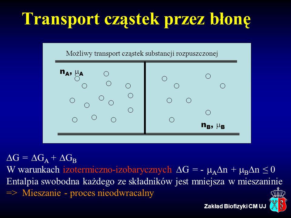 Transport cząstek przez błonę  G =  G A +  G B W warunkach izotermiczno-izobarycznych  G = -  A  n +  B  n ≤ 0 Entalpia swobodna każdego ze sk