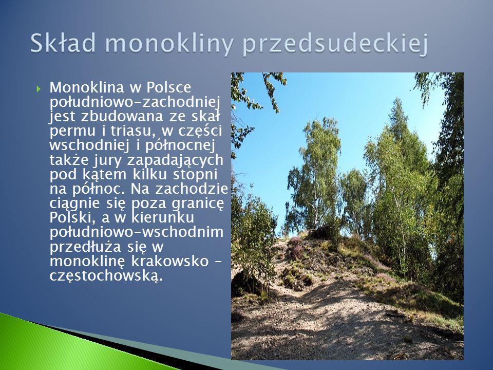  Monoklina w Polsce południowo-zachodniej jest zbudowana ze skał permu i triasu, w części wschodniej i północnej także jury zapadających pod kątem kilku stopni na północ.