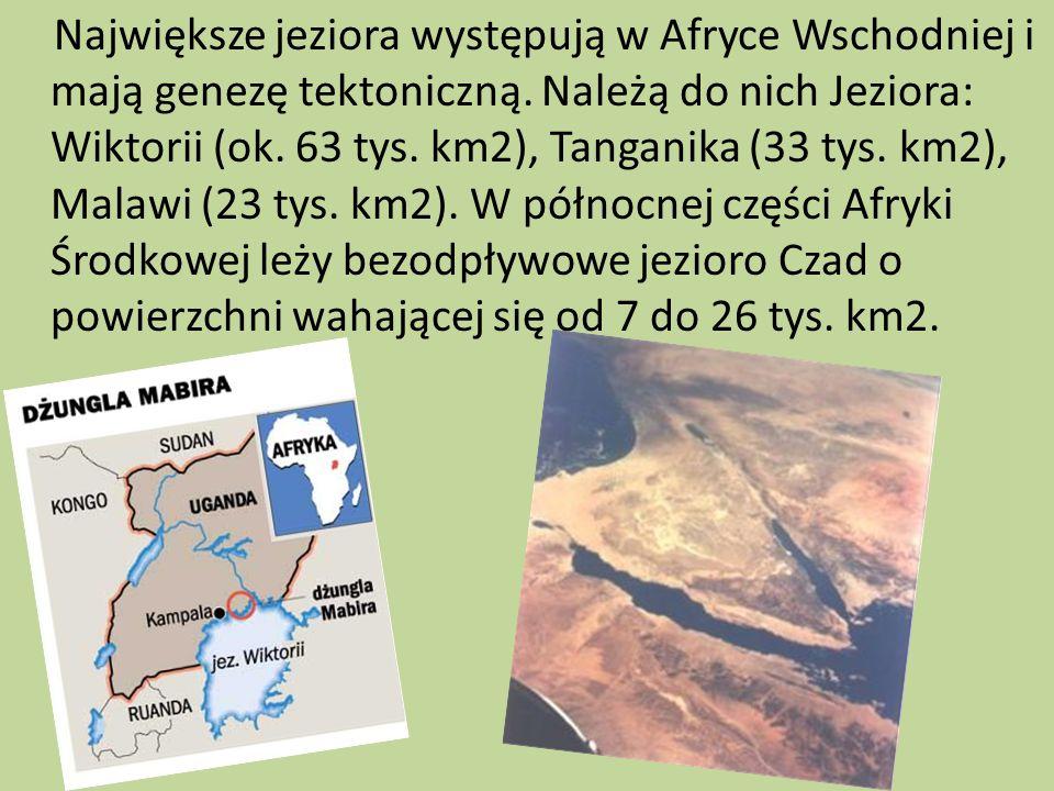 Największe jeziora występują w Afryce Wschodniej i mają genezę tektoniczną.