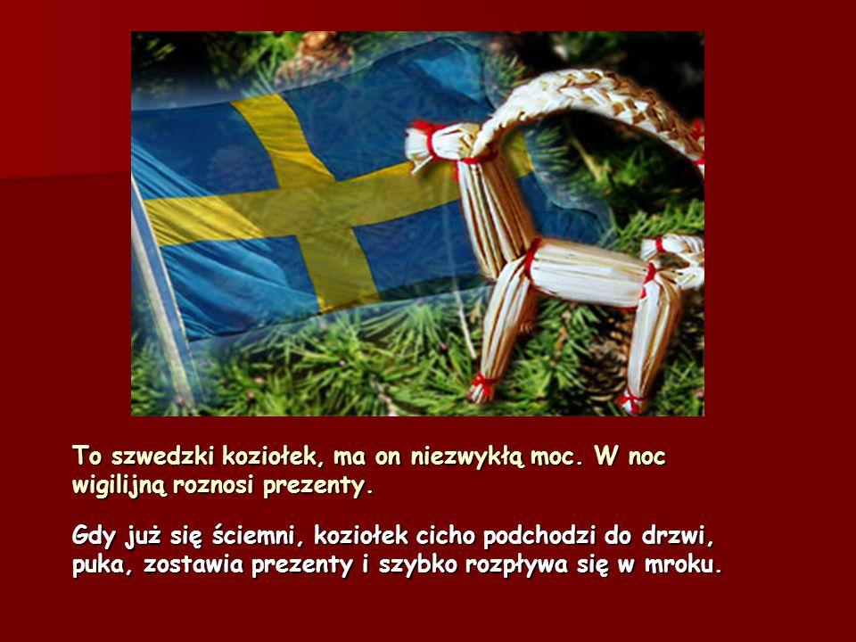 Choinka zupełnie jak u nas, też ozdabia domy Szwedów, nie uwierzycie, ale oni również pieką pierniki