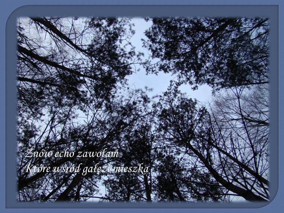 Znów echo zawołam Które wśród gałęzi mieszka