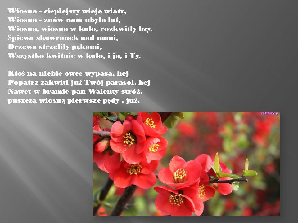 Wiosna - cieplejszy wieje wiatr, Wiosna - znów nam ubyło lat, Wiosna, wiosna w koło, rozkwitły bzy. Ś piewa skowronek nad nami, Drzewa strzeliły p ą k