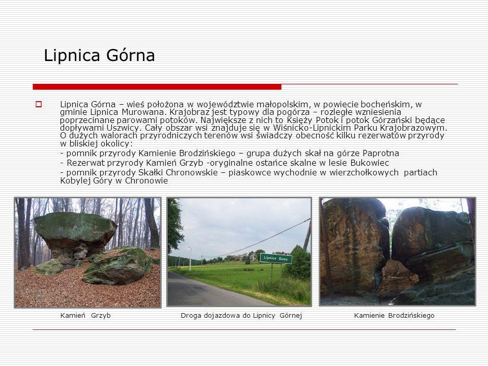 Lipnica Górna  Lipnica Górna – wieś położona w województwie małopolskim, w powiecie bocheńskim, w gminie Lipnica Murowana. Krajobraz jest typowy dla