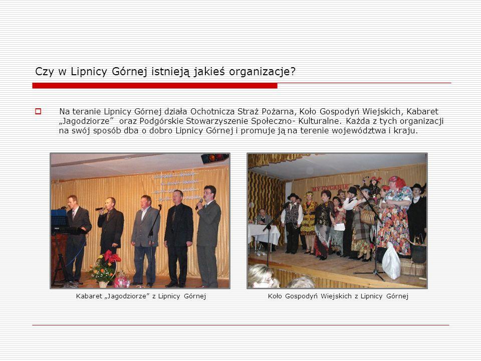 Czy w Lipnicy Górnej istnieją jakieś organizacje.