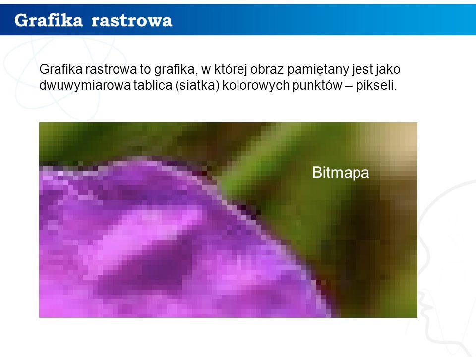 Grafika rastrowa – cechy 5 Źródłem obrazów rastrowych są: rysunki wykonane w programach malarskich skanowane obrazy analogowe fotografia cyfrowa Cechy charakterystyczne bitmapy: szerokość i wysokość bitmapy liczona w pikselach rozdzielczość (liczba pikseli na cal) głębia kolorów (liczba bitów przeznaczonych do zapisania koloru jednego piksela)