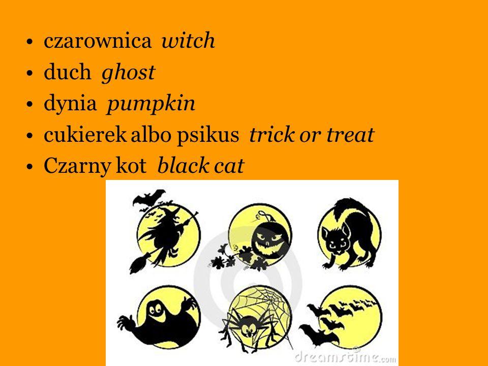 czarownica witch duch ghost dynia pumpkin cukierek albo psikus trick or treat Czarny kot black cat
