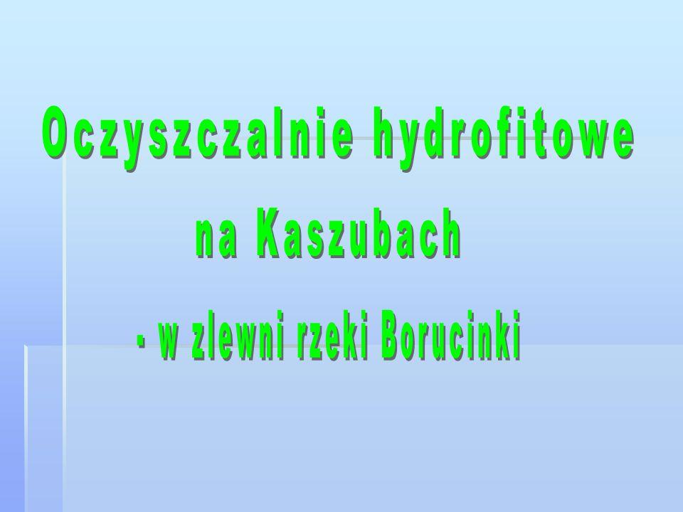 Oczyszczalnie hydrofitowe są bardzo dobrym rozwiązaniem na Kaszubach, gdzie nie jest planowana kanalizacja.