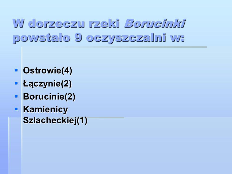 W dorzeczu rzeki Borucinki powstało 9 oczyszczalni w:  Ostrowie(4)  Łączynie(2)  Borucinie(2)  Kamienicy Szlacheckiej(1)