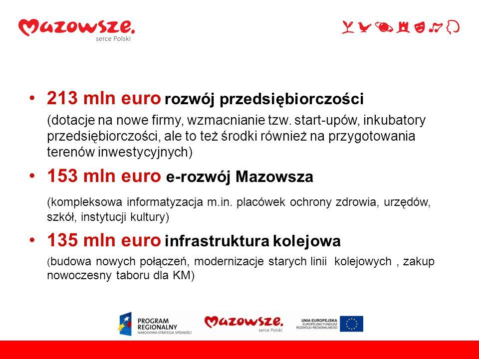 213 mln euro rozwój przedsiębiorczości (dotacje na nowe firmy, wzmacnianie tzw.