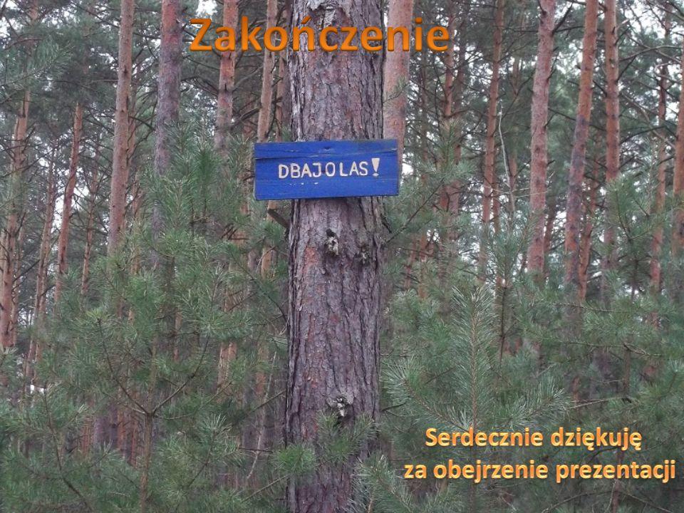 Zwierzęta leśne można dokarmiać jedynie za zgodą leśniczego w okresie zimy.