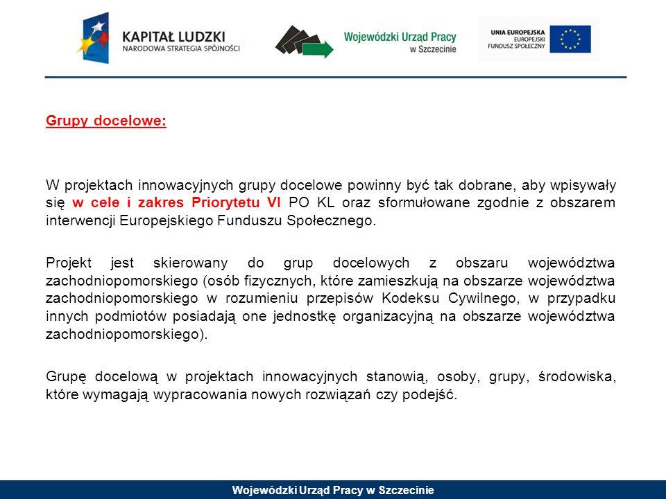 Wojewódzki Urząd Pracy w Szczecinie Grupy docelowe: W projektach innowacyjnych grupy docelowe powinny być tak dobrane, aby wpisywały się w cele i zakres Priorytetu VI PO KL oraz sformułowane zgodnie z obszarem interwencji Europejskiego Funduszu Społecznego.