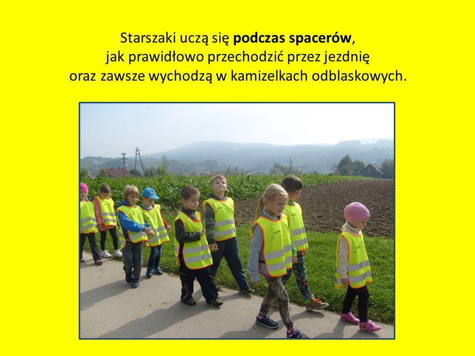 Starszaki uczą się podczas spacerów, jak prawidłowo przechodzić przez jezdnię oraz zawsze wychodzą w kamizelkach odblaskowych.