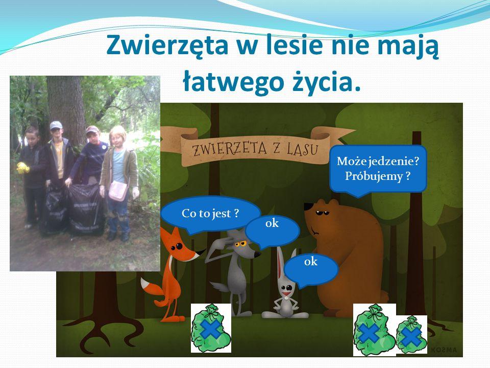 Mój wkład w ochronę lasu i jego mieszkańców.