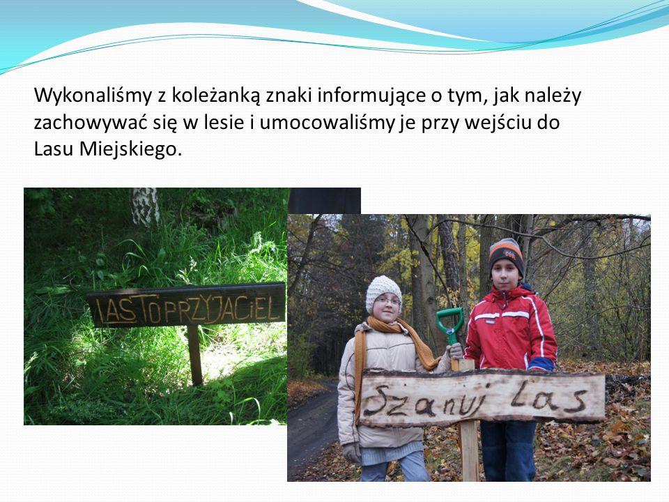 Wykonaliśmy z koleżanką znaki informujące o tym, jak należy zachowywać się w lesie i umocowaliśmy je przy wejściu do Lasu Miejskiego.