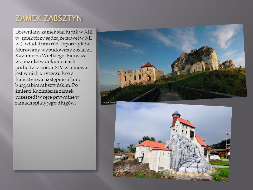ZAMEK ZABSZTYN Drewniany zamek stał tu już w XIII w. (niektórzy sądzą że nawet w XII w.), władał nim ród Toporczyków. Murowany wybudowany został za Ka