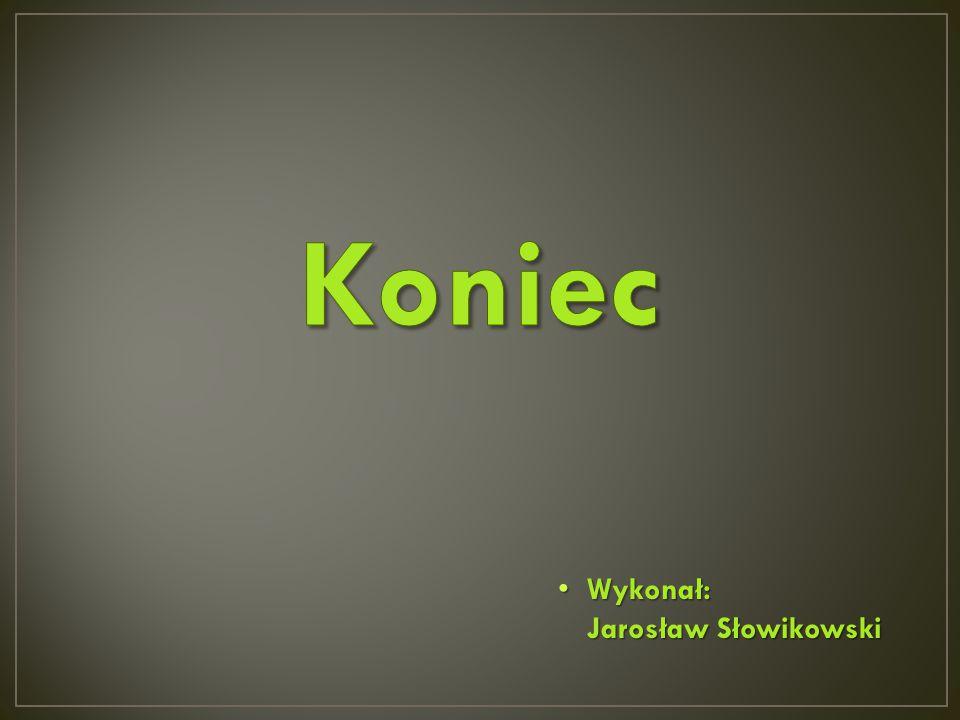 Wykonał: Jarosław Słowikowski Wykonał: Jarosław Słowikowski