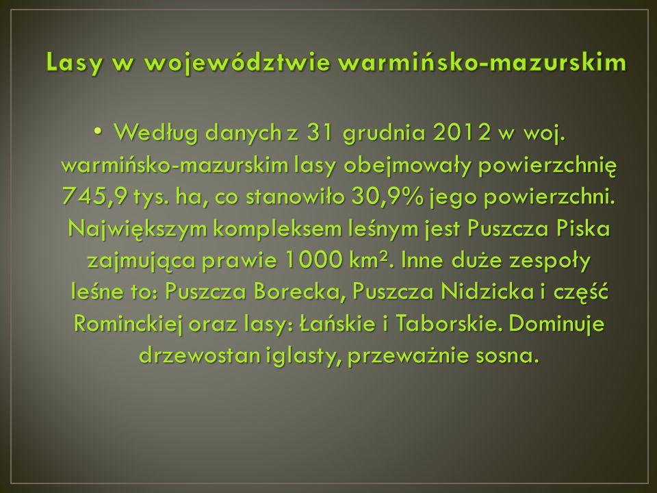 Według danych z 31 grudnia 2012 w woj. warmińsko-mazurskim lasy obejmowały powierzchnię 745,9 tys. ha, co stanowiło 30,9% jego powierzchni. Największy