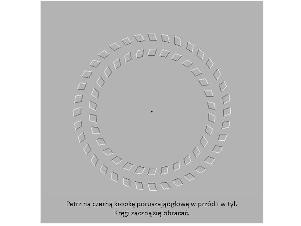 Patrz na czarną kropkę poruszając głową w przód i w tył. Kręgi zaczną się obracać.