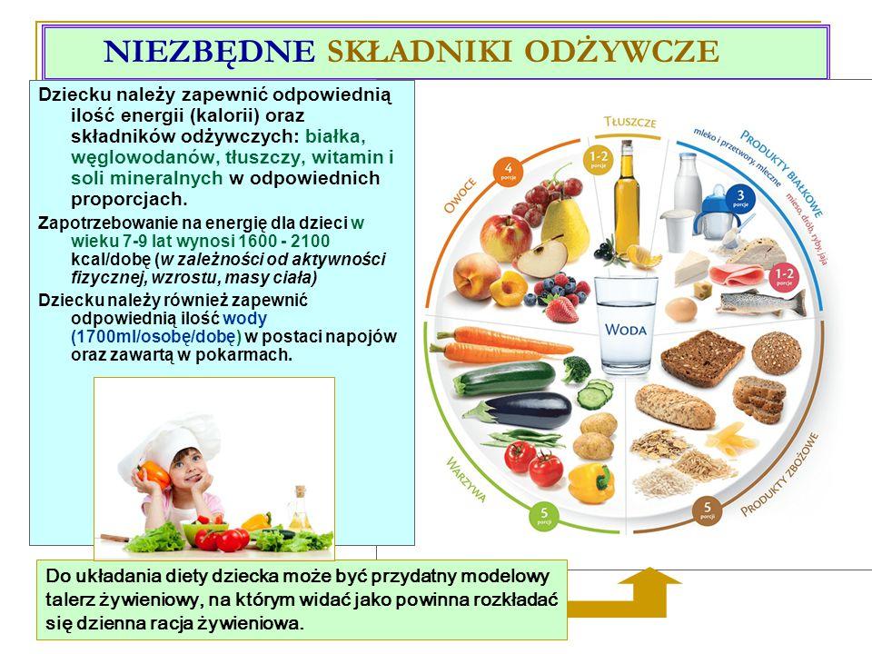 NIEZBĘDNE SKŁADNIKI ODŻYWCZE Do układania diety dziecka może być przydatny modelowy talerz żywieniowy, na którym widać jako powinna rozkładać się dzienna racja żywieniowa.
