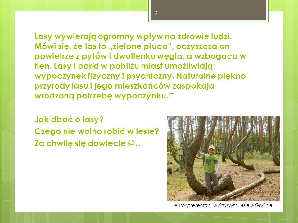 2 Lasy wywierają ogromny wpływ na zdrowie ludzi.