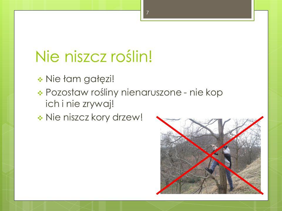 Nie niszcz roślin. Nie łam gałęzi.  Pozostaw rośliny nienaruszone - nie kop ich i nie zrywaj.