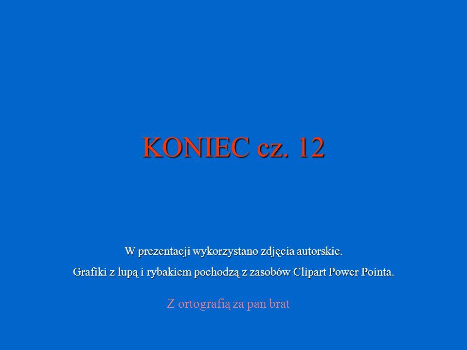 KONIEC cz. 12 Z ortografią za pan brat W prezentacji wykorzystano zdjęcia autorskie. Grafiki z lupą i rybakiem pochodzą z zasobów Clipart Power Pointa