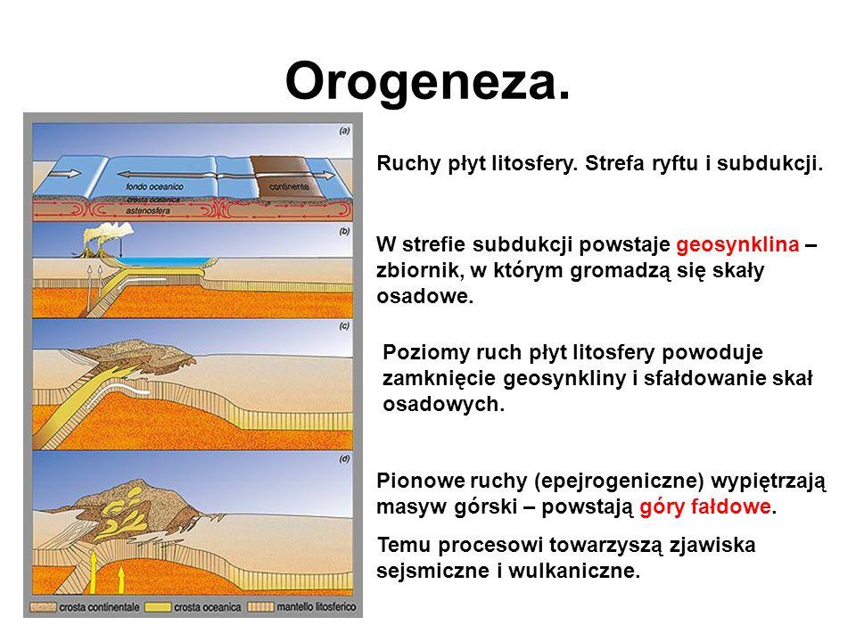 Orogeneza. Ruchy płyt litosfery. Strefa ryftu i subdukcji. W strefie subdukcji powstaje geosynklina – zbiornik, w którym gromadzą się skały osadowe. P