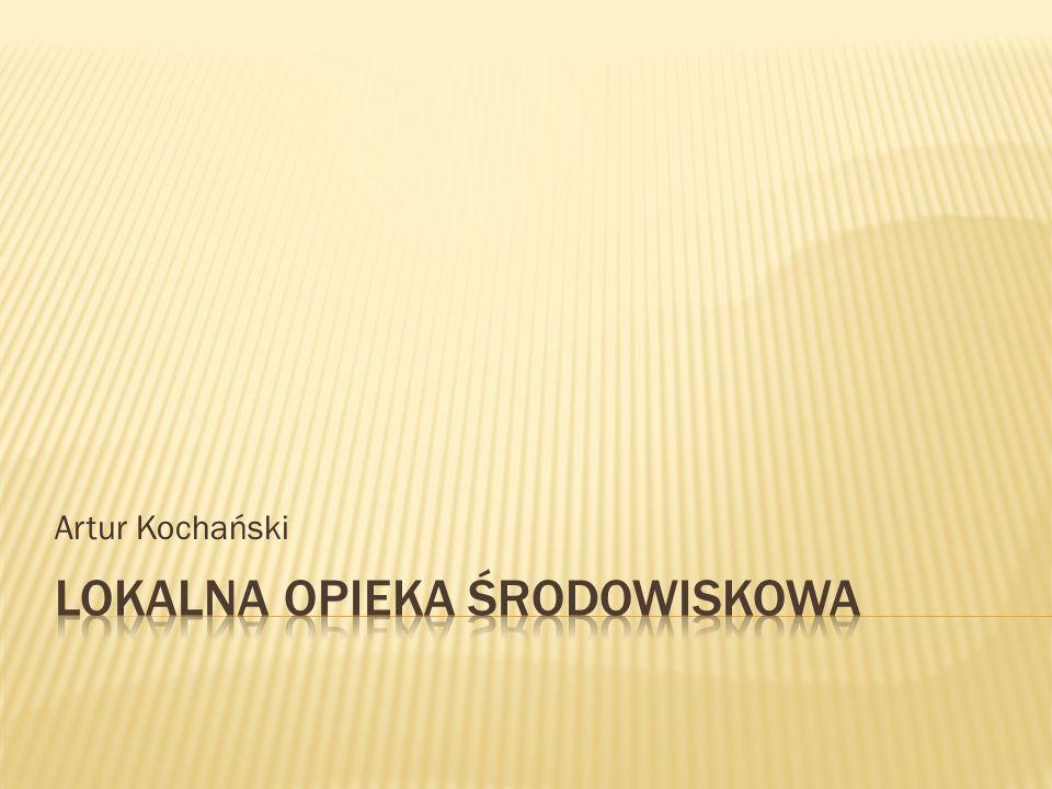 Artur Kochański