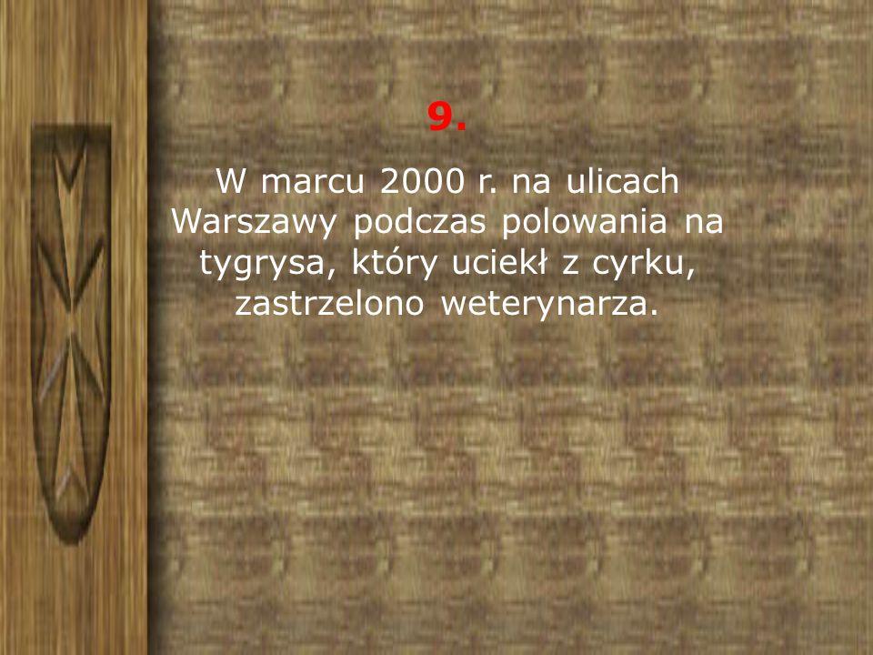 9. W marcu 2000 r. na ulicach Warszawy podczas polowania na tygrysa, który uciekł z cyrku, zastrzelono weterynarza.