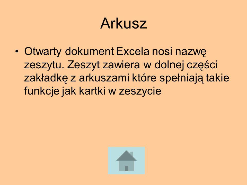 Arkusz Otwarty dokument Excela nosi nazwę zeszytu. Zeszyt zawiera w dolnej części zakładkę z arkuszami które spełniają takie funkcje jak kartki w zesz