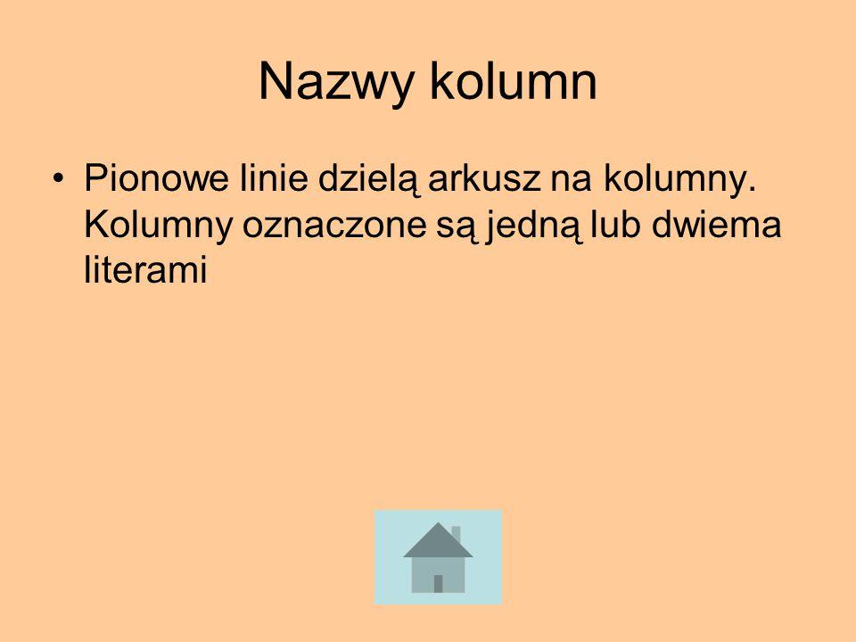 Nazwy kolumn Pionowe linie dzielą arkusz na kolumny. Kolumny oznaczone są jedną lub dwiema literami