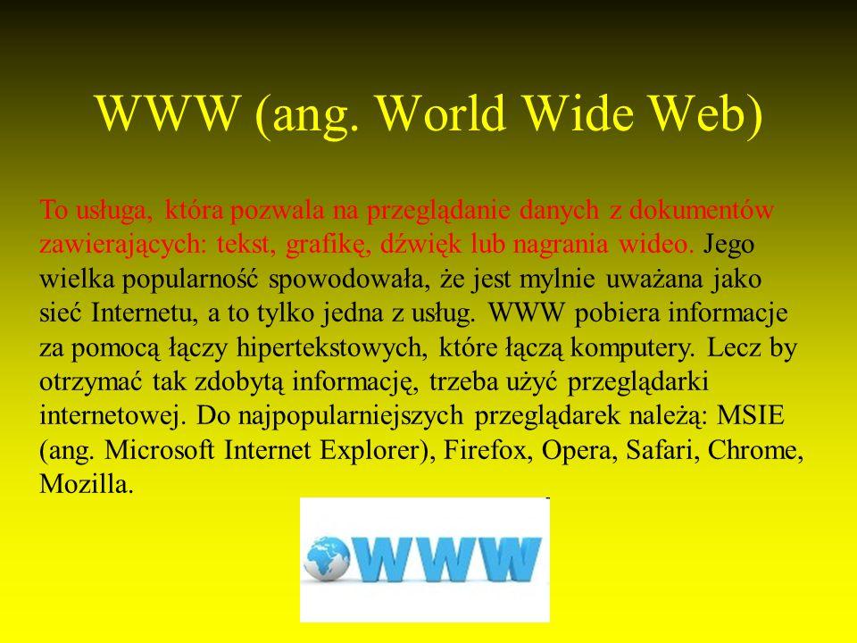 WWW (ang.