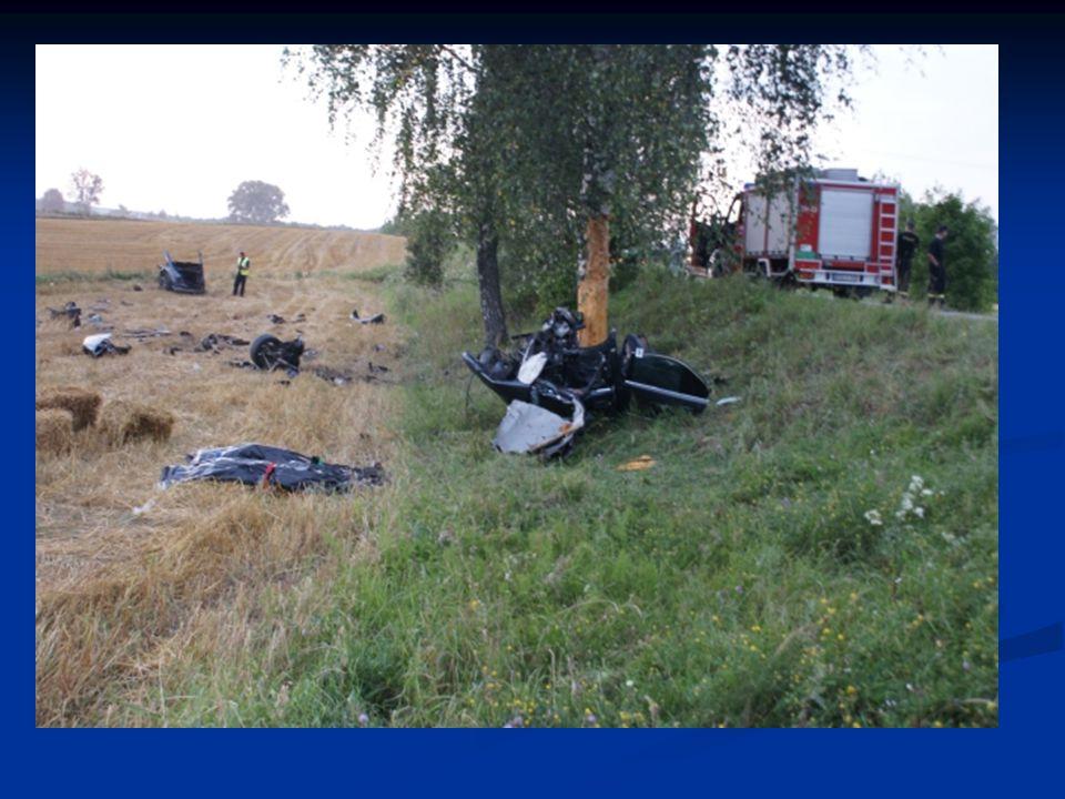 19-latek pochodzący z powiatu sejneńskiego, jadąc z dużą prędkością zjechał na prawe pobocze, następnie na przeciwległy pas ruchu do rowu i uderzył w drzewo.