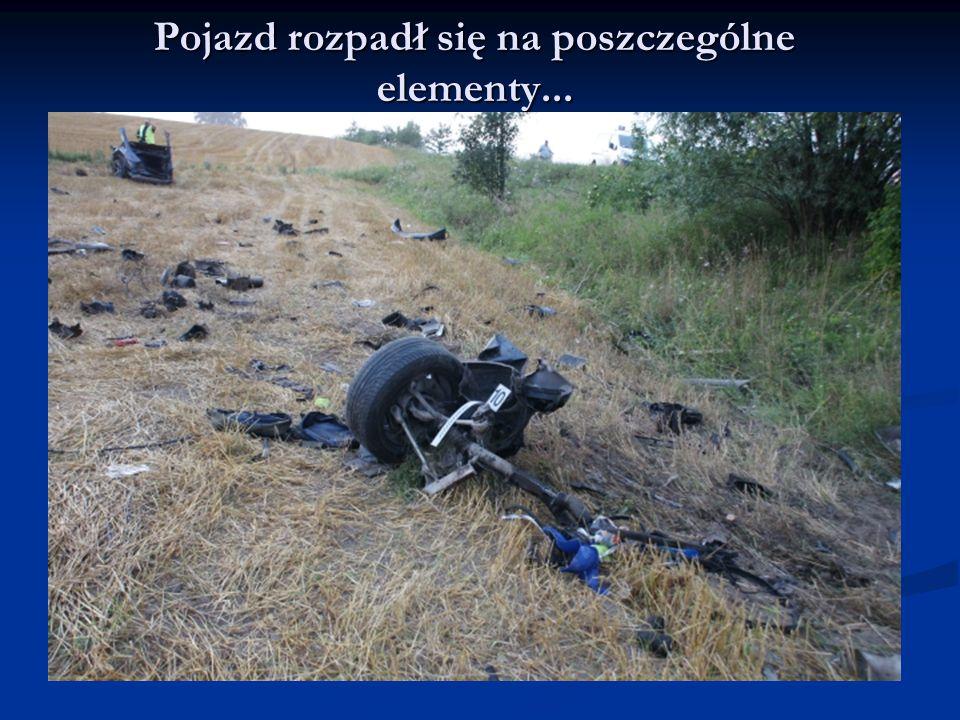 Śmierć na miejscu poniósł kierowca oraz 19-letni pasażer.