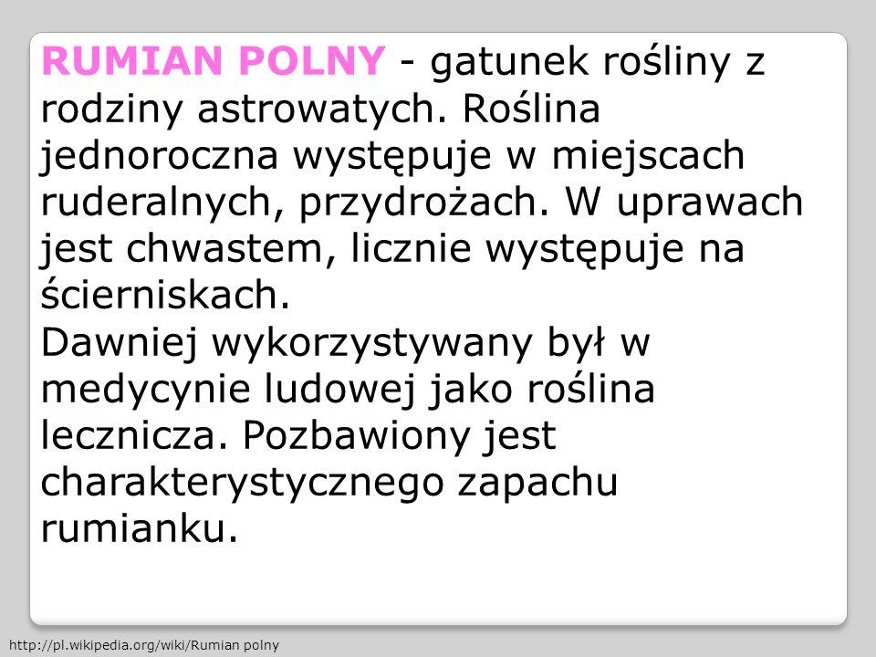 RUMIAN POLNY - gatunek rośliny z rodziny astrowatych. Roślina jednoroczna występuje w miejscach ruderalnych, przydrożach. W uprawach jest chwastem, li