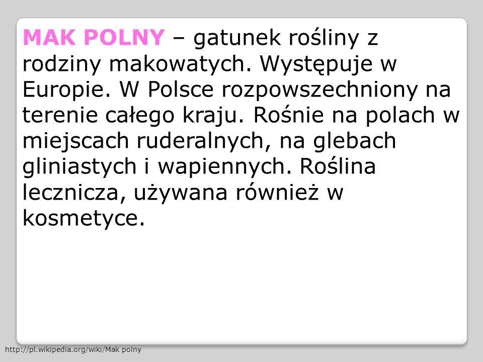 MAK POLNY – gatunek rośliny z rodziny makowatych. Występuje w Europie. W Polsce rozpowszechniony na terenie całego kraju. Rośnie na polach w miejscach