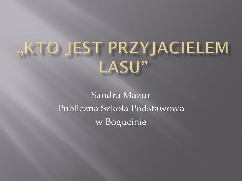 Sandra Mazur Publiczna Szkoła Podstawowa w Bogucinie