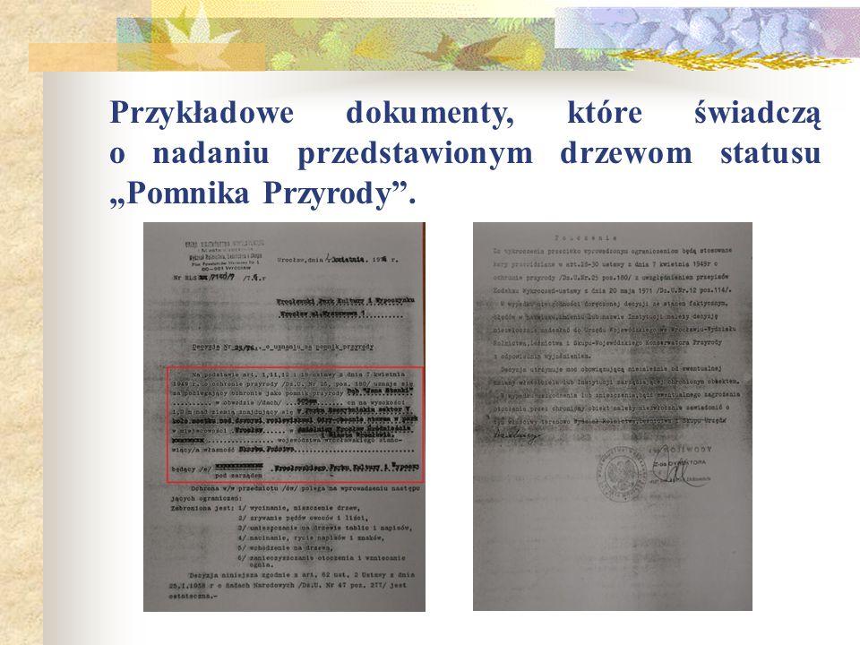 """Przykładowe dokumenty, które świadczą o nadaniu przedstawionym drzewom statusu """"Pomnika Przyrody ."""
