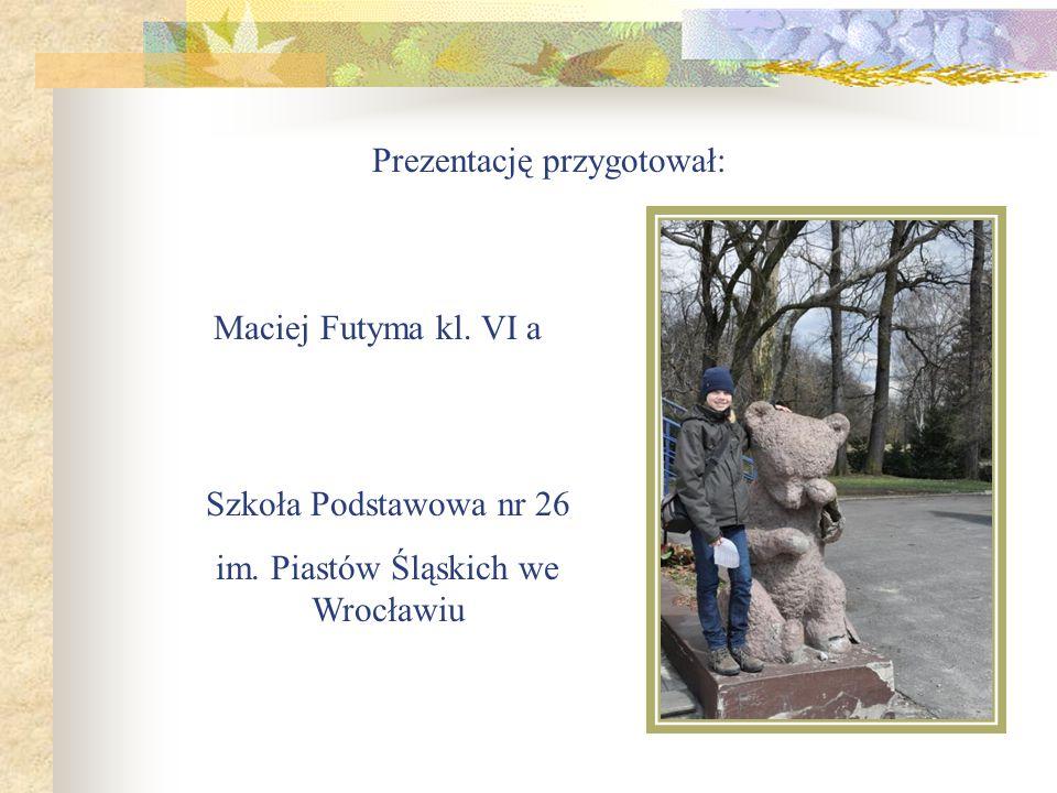 Prezentację przygotował: Maciej Futyma kl.VI a Szkoła Podstawowa nr 26 im.