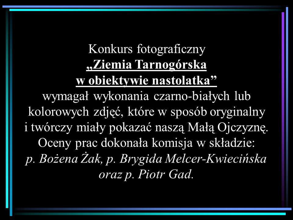 """Konkurs fotograficzny """"Ziemia Tarnogórska w obiektywie nastolatka"""" wymagał wykonania czarno-białych lub kolorowych zdjęć, które w sposób oryginalny i"""