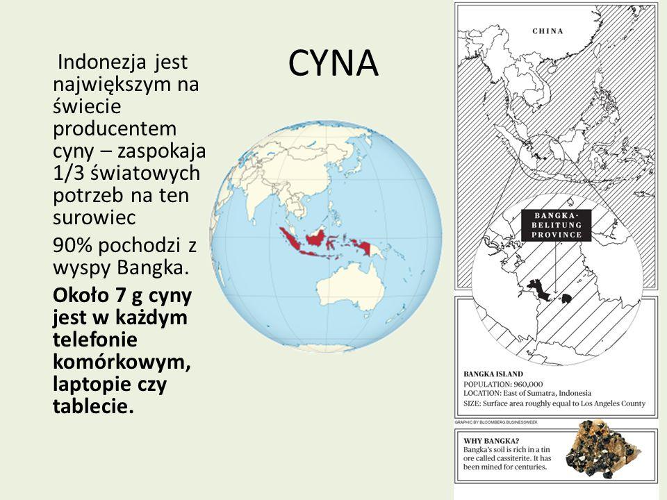 CYNA Indonezja jest największym na świecie producentem cyny – zaspokaja 1/3 światowych potrzeb na ten surowiec 90% pochodzi z wyspy Bangka. Około 7 g