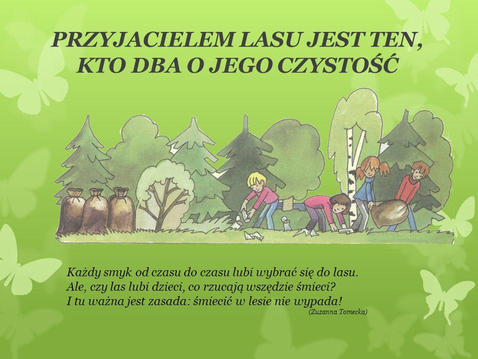 PRZYJACIELEM LASU JEST TEN, KTO DBA O JEGO CZYSTOŚĆ Każdy smyk od czasu do czasu lubi wybrać się do lasu. Ale, czy las lubi dzieci, co rzucają wszędzi