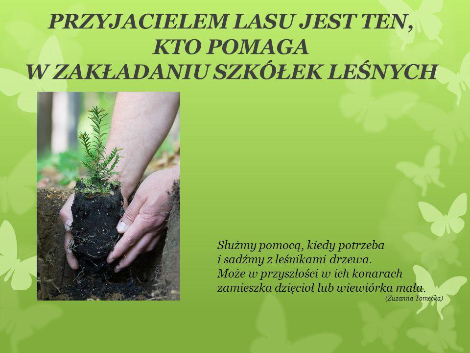 PRZYJACIELEM LASU JEST TEN, KTO POMAGA W ZAKŁADANIU SZKÓŁEK LEŚNYCH Służmy pomocą, kiedy potrzeba i sadźmy z leśnikami drzewa. Może w przyszłości w ic
